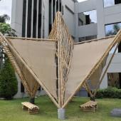 bambu-01